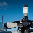 Lockheed AP-3C Orion Propeller and Engine by palmerphoto