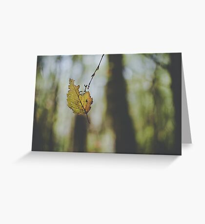 Floating on a breeze Greeting Card