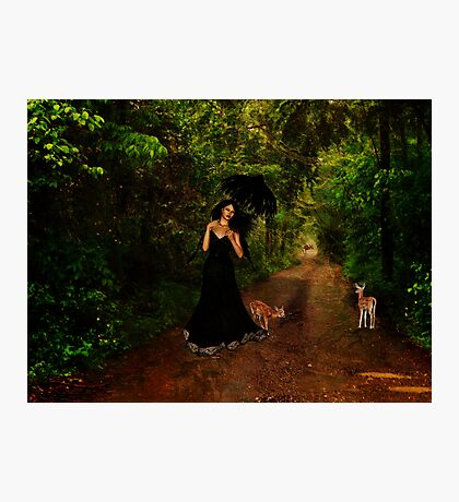 Walking With Nature Photographic Print
