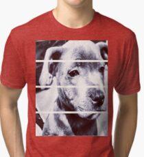 Dapper Boy Dog Tri-blend T-Shirt