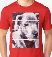 Dapper Boy Dog T-Shirt