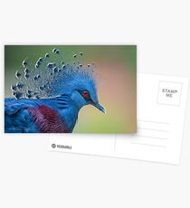 Well Crowned Postcards