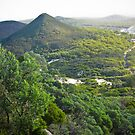 Tomaree National Park by Bruce  Dickson