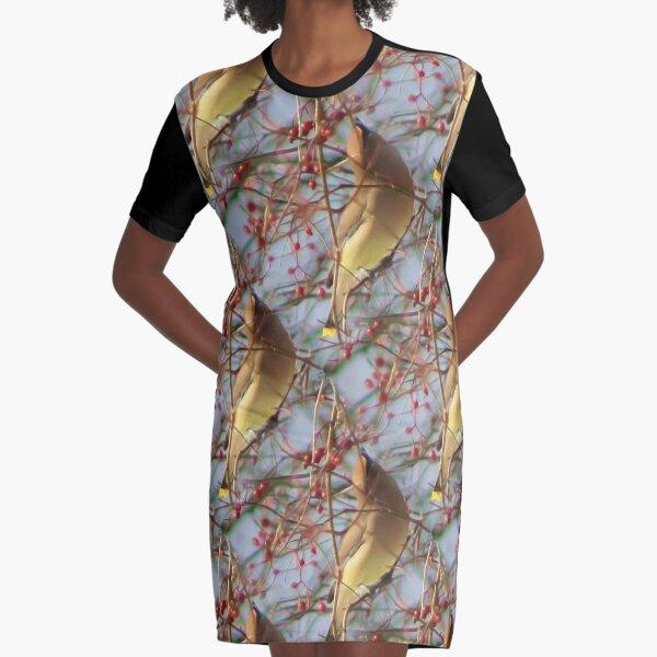 Cedar Waxwing Bird And Berries  Graphic T-Shirt Dress