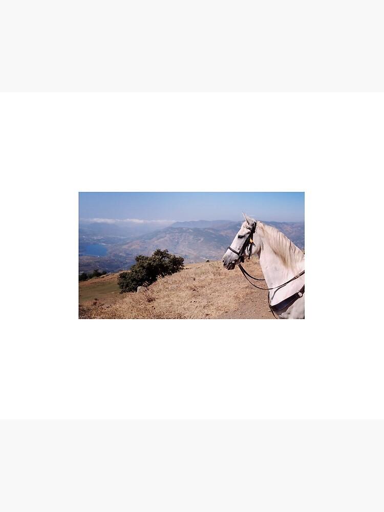 Pieper enjoying the Andalucian mountain view by CaballoBlanco