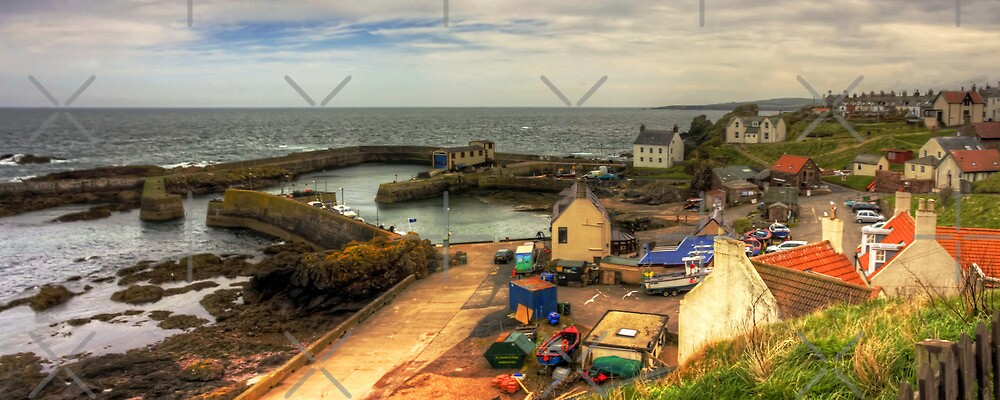 The Harbour at St Abbs Panorama by Tom Gomez