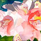 Rhododendron in Peach by Sally Griffin