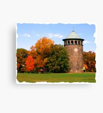Field Stone in the Fall Canvas Print