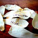 Loves Me Not by EmilyDawn
