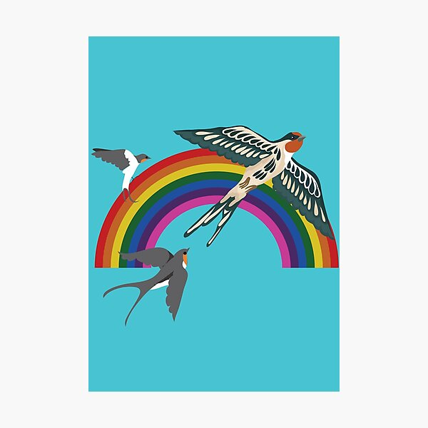Sparrows and Rainbows Photographic Print