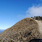 I Dont Think I Want To Go Up There Either - Blue Rag Range Track - Victorian High Country by MissyD