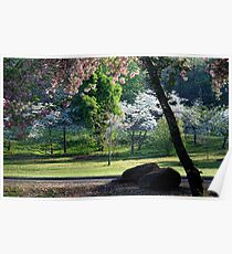 Spring At Honor Heights Poster