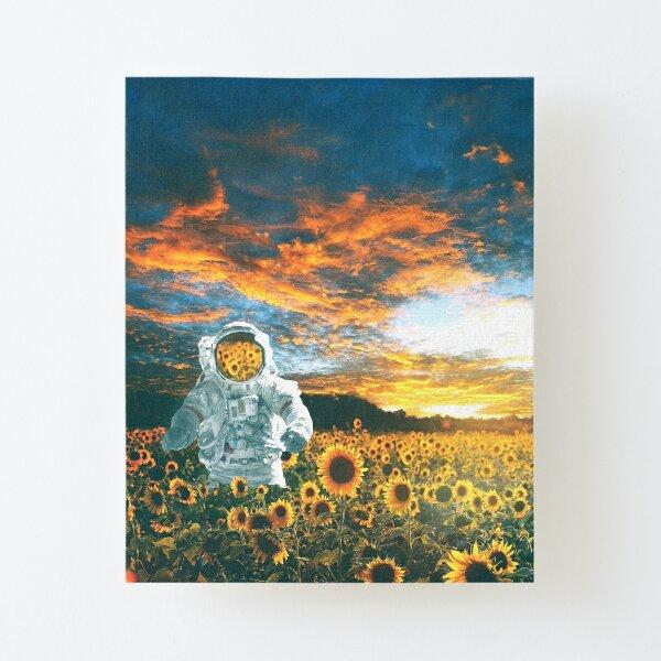 In a galaxy far, far away Canvas Mounted Print