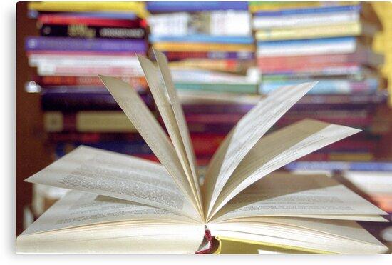 An open Book (1) by KUJO-Photo