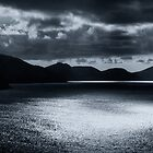 Dark Mood by barkeypf