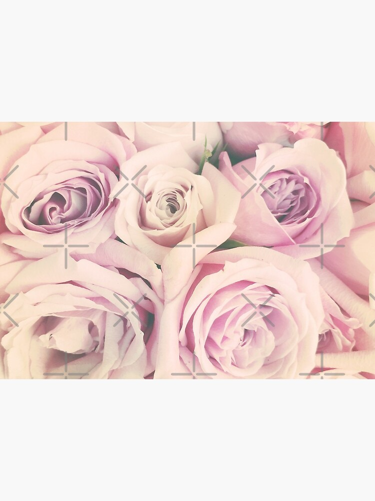 Gift for Gardener - Pink Rose Blush Pastel Gift - Floral Present by OneDayArt