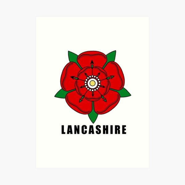 Lancashire rose Art Print