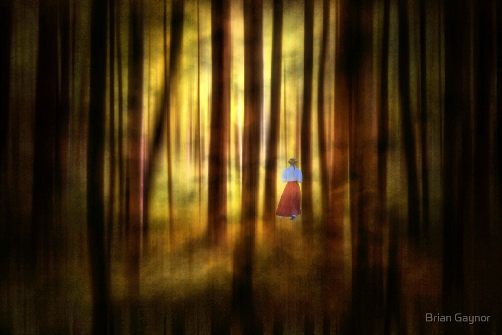 The Enchanted Forest by Brian Gaynor
