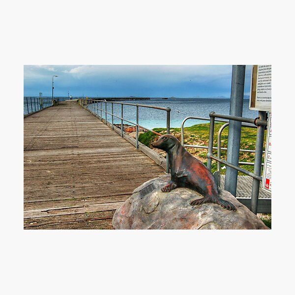 The Tanker Jetty Photographic Print