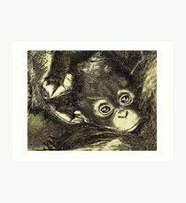 baby orangutan Art Print