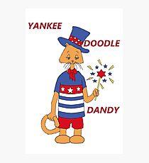 Yankee Doodle Kitty Photographic Print