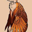 Flying Fox by Amanda Zito