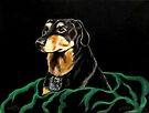 Oscar by Susan McKenzie Bergstrom