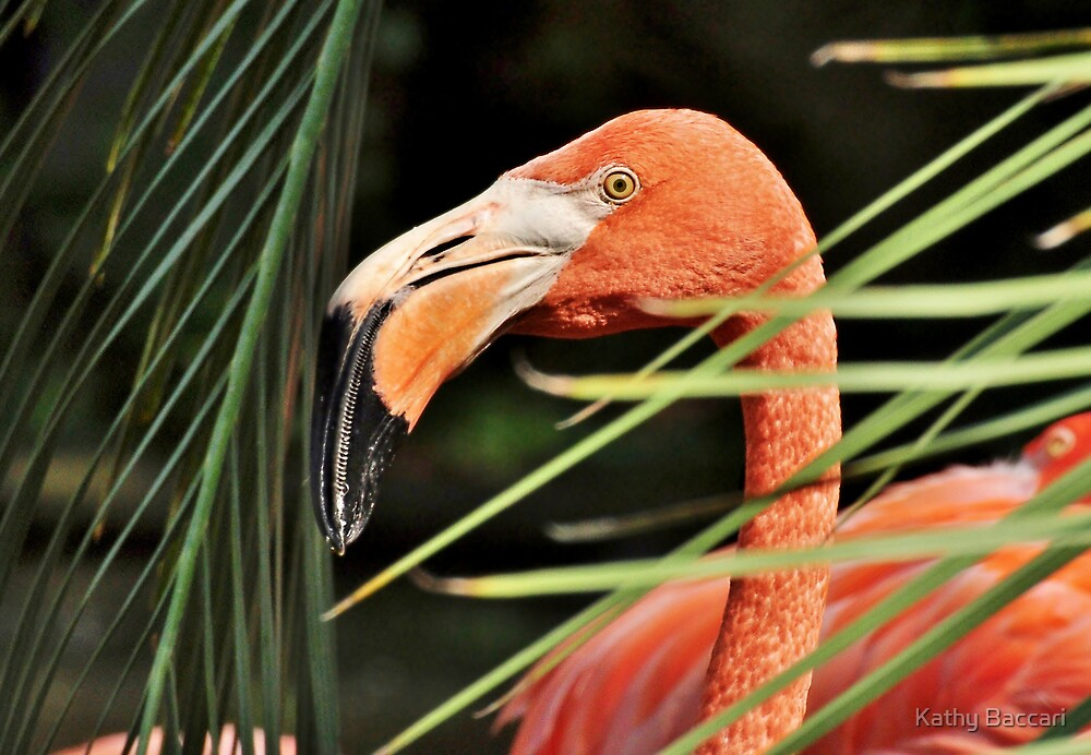Flamingo Time by Kathy Baccari