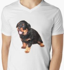Cute Rottweiler Puppy Mens V-Neck T-Shirt