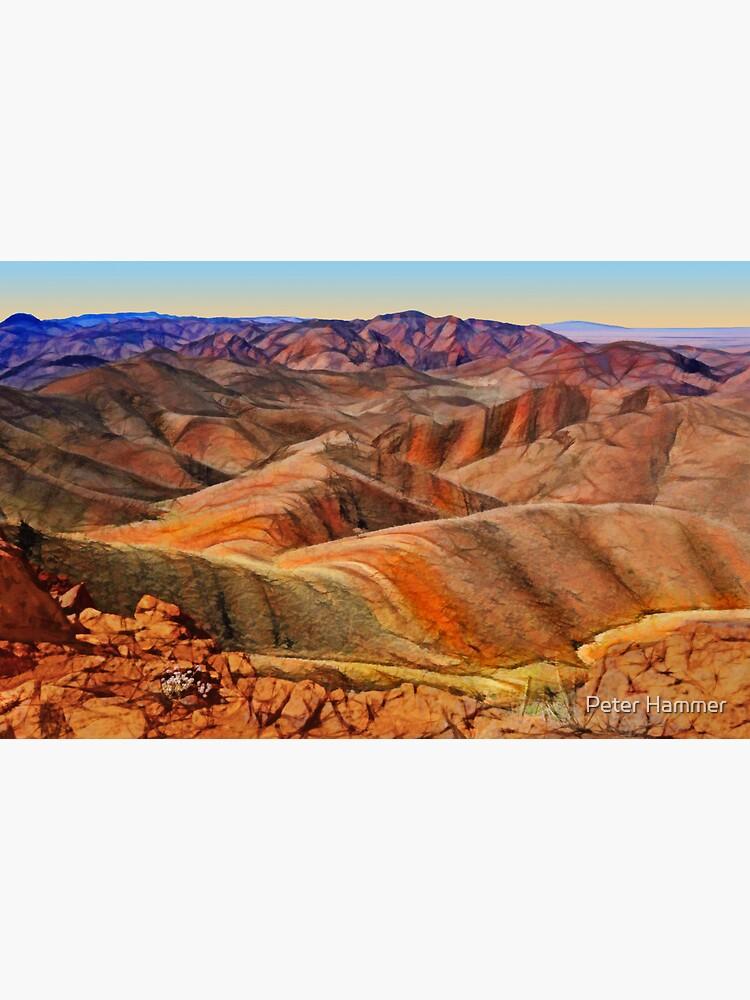 Arkaroola Landscape by PeterH
