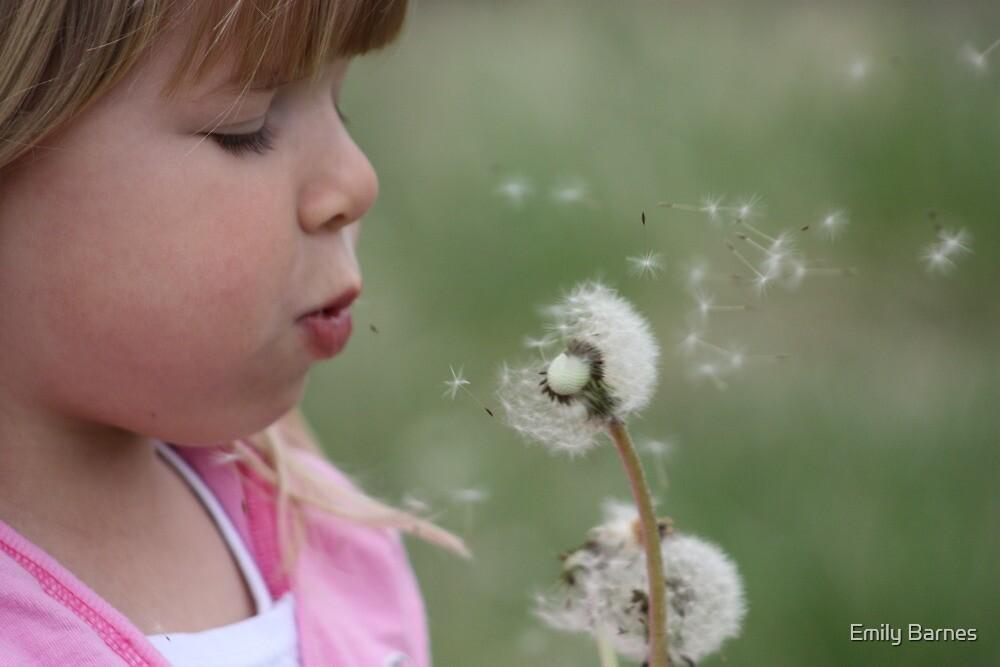 Make a wish... by Emily Barnes