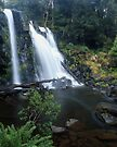 """Hidden Falls"" ∞ Cradle Mountain, Tasmania - Australia by Jason Asher"
