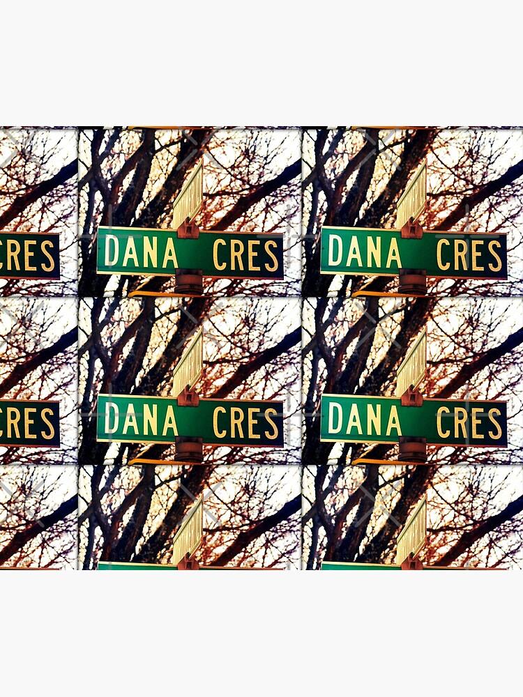 Dana, A gift for Dana, Dana street sign, Birthday gift for Dana  by PicsByMi