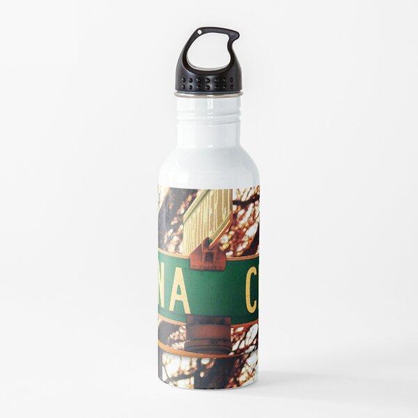 Dana, A gift for Dana, Dana street sign, Birthday gift for Dana  Water Bottle