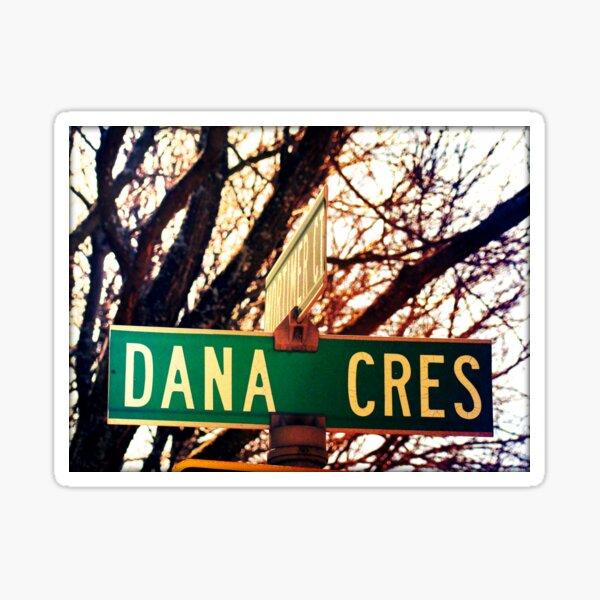 Dana, A gift for Dana, Dana street sign, Birthday gift for Dana  Sticker
