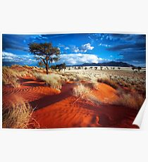 Dancing Grasses on the Red, Red Earth Poster