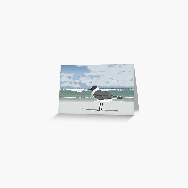 Laughing Gull On Beach  Greeting Card