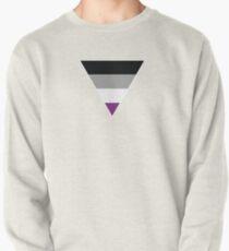 Asexual flag hoodie