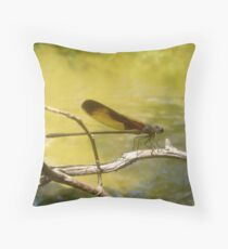 AMERICAN RUBYSPOT on Econfina Creek Throw Pillow