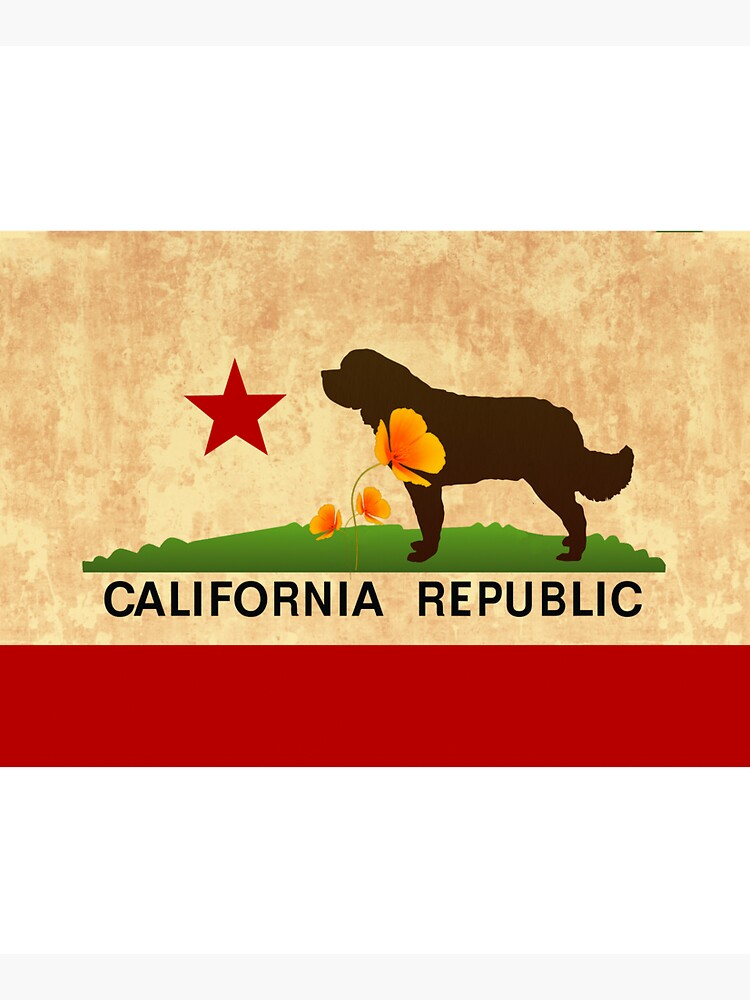 California Flag Face Mask by itsmechris