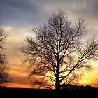 """Sunset on the DON"" by Husky"