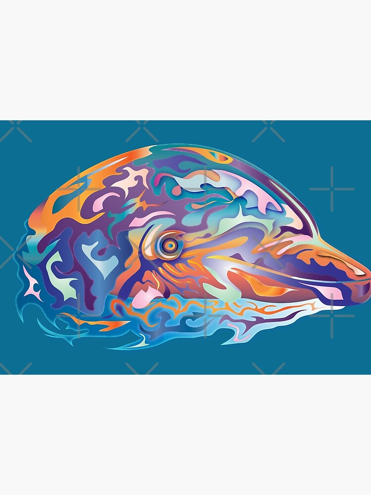 Dolphinator by Vanwizle