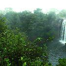 Rainbow Falls by cadellin