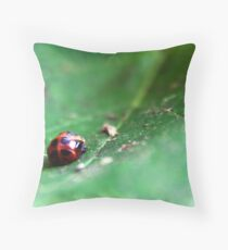 Ladybug Pupa Throw Pillow