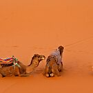 Morning pray at Erg Chebbi on edge of the Sahara by Konstantinos Arvanitopoulos