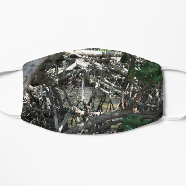 Through the Mangrove Mask