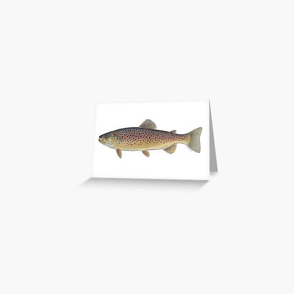Brown Trout (Salmo trutta) Greeting Card