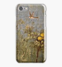 Wall Fresco iPhone Case/Skin