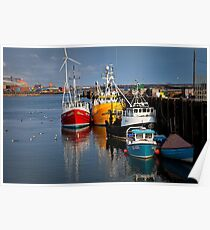 Fishing boats in harbour Poster