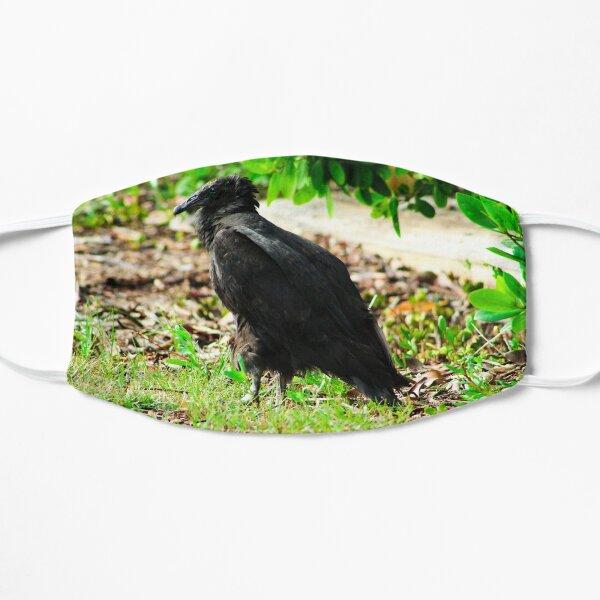 Black-Headed Vulture Mask